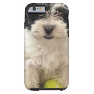 Blanco del negro del perrito del rescate de funda para iPhone 6 tough