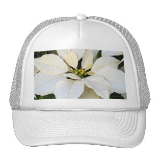 Blanco del Poinsettia Gorros