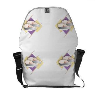 Blanco del sushi bolsas de mensajeria