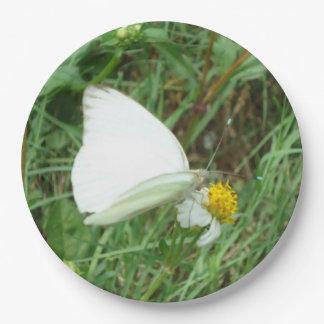 Blanco en verde plato de papel 22,86 cm