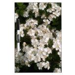 Blanco floral