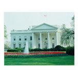 Blanco la Casa Blanca, Washington, C.C., los E.E.U Postales