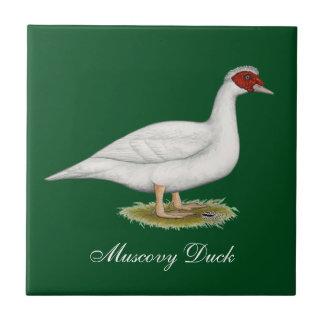 Blanco Muscovy del pato Azulejo Cuadrado Pequeño