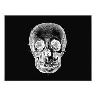 Blanco negro anatómico retro del cráneo de los 180 impresión fotográfica