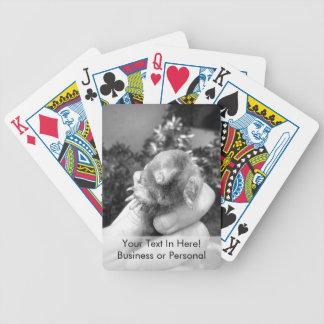 Blanco negro animal sonriente vivo del topo a barajas de cartas