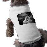 Blanco negro animal sonriente vivo del topo a disp camisetas de perro