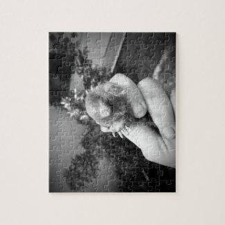 Blanco negro animal sonriente vivo del topo a puzzles con fotos