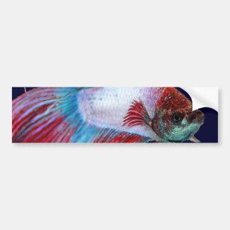 Blanco rojo y azul (los pescados despejan el fondo pegatina para auto