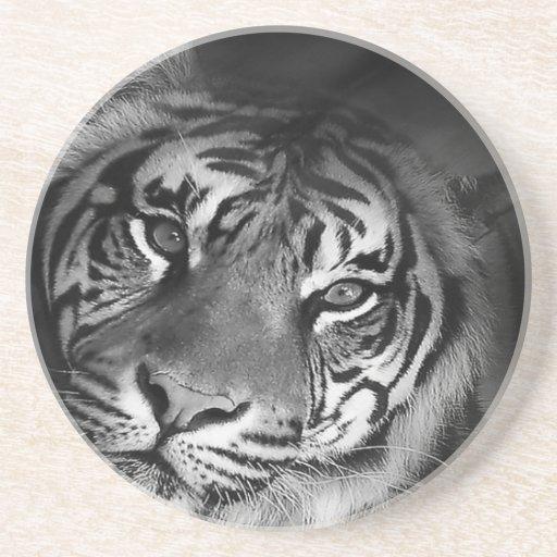 blanco-tigre posavasos diseño