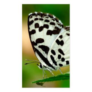 Blanco y mariposa manchada negro de Pierrot Tarjeta Personal