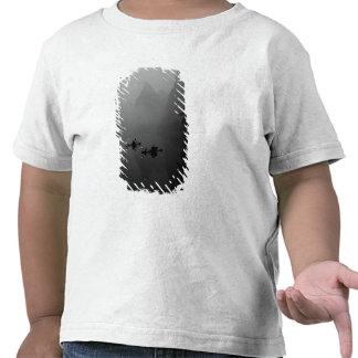 Blanco y negro China río de Li pescador encendi Camiseta