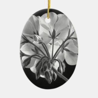 Blanco y negro en curso de la flor del geranio adornos
