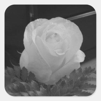 Blanco y negro pegatina cuadrada