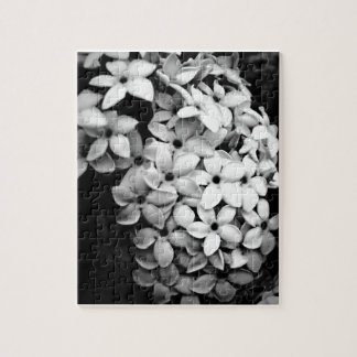 Blanco y negro rompecabeza con fotos