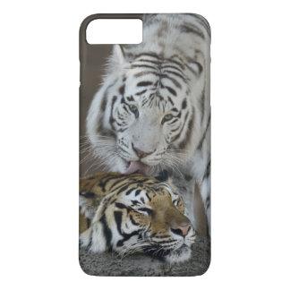 Blanco y reclinación de los tigres de Brown Funda iPhone 7 Plus