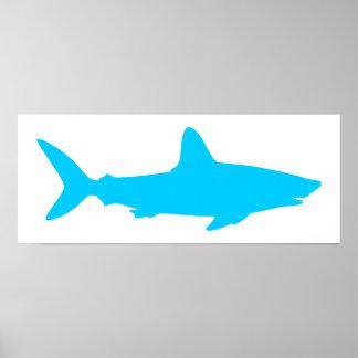 Blanco y tiburón azul de la aguamarina póster