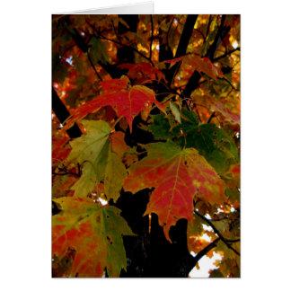 Blank_Autumn Leaves Card