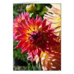 Blank Card, Dahlia Flower