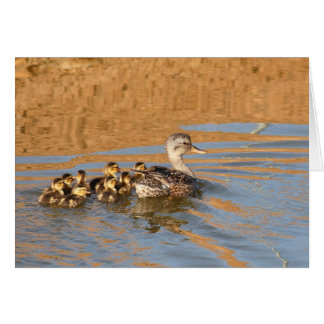 Blank Card, Ducklings Stationery Note Card