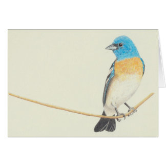 Blank Card - Lazuli Bunting