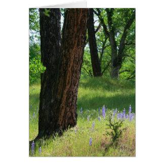 Blank Card, Lupin Flower & Oak Tree Card