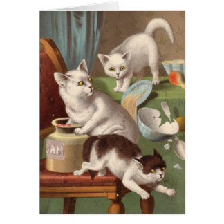 Blank card - Naughty Cat series - Cats in a jam