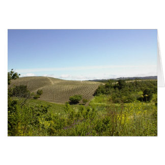 Blank Card: Templeton CA Wine Country Card