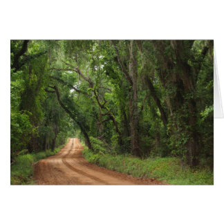 Blank Card with a Country Plantation Road