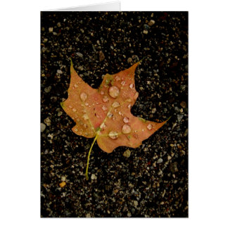 Blank-Dew-Drop Autumn Leaf Card
