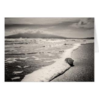 Blank Greeting card - sea shell on beach