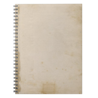 Blank Grungy Antique Stained Paper Notebook