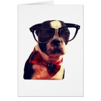 Blank Hipster Boston Terrier card