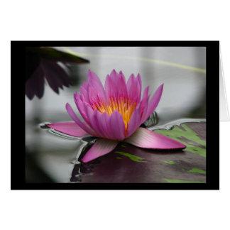 Blank Lotus Card (vertical)