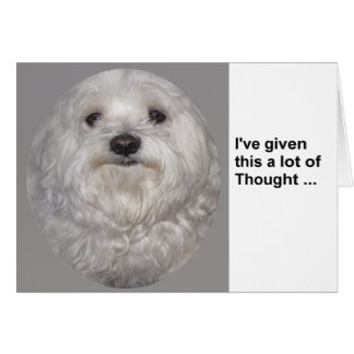 Blank Maltese 'Ive given this a lot of thought' Card