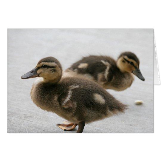 Blank Note Card, Ducklings Card