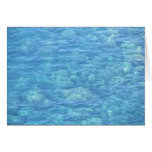 Blank Note Card--Tide Pool