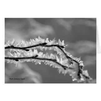 Blank Note Card, Winter in black & white Card