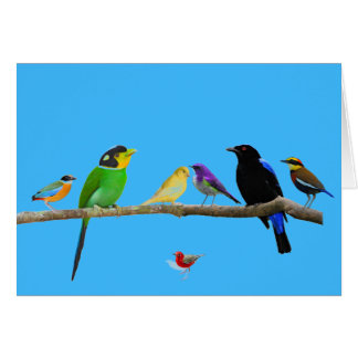 blank note card with birds and color
