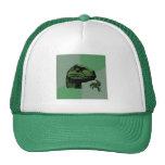Blank Philosoraptor Mesh Hats