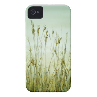 blank products grass iPhone 4 Case-Mate case