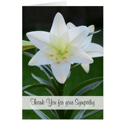 Blank Religious Sympathy Thank You Note Card