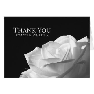 Blank Sympathy Thank You Card -- White Rose