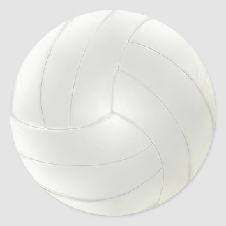 Blank Volleyball Stickers to Hand Write Your Names