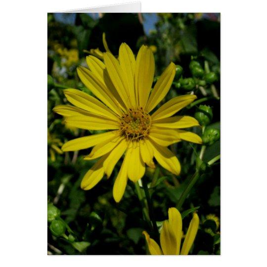 Blank_Yellow Leafy Sky Card