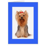 Blank Yorkshire Terrier Puppy Dog Notecard Stationery Note Card