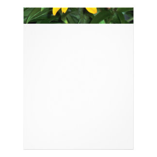 Blanket among the Lilies Personalized Letterhead