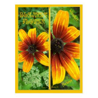 BLANKET FLOWER BOOKMARKS POSTCARD