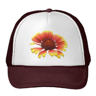 Blanket Flower ~ hat