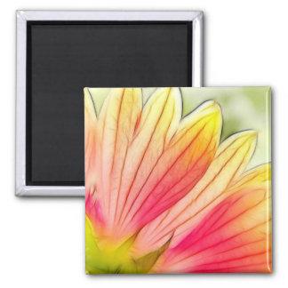 Blanket Flower Petals Close Up Magnet
