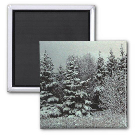 Blanket Of Snow Magnet